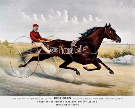 Fine art Horseracing Print of the 1800's Racing and Trotting of The Champion Trotting Stallion Nelson